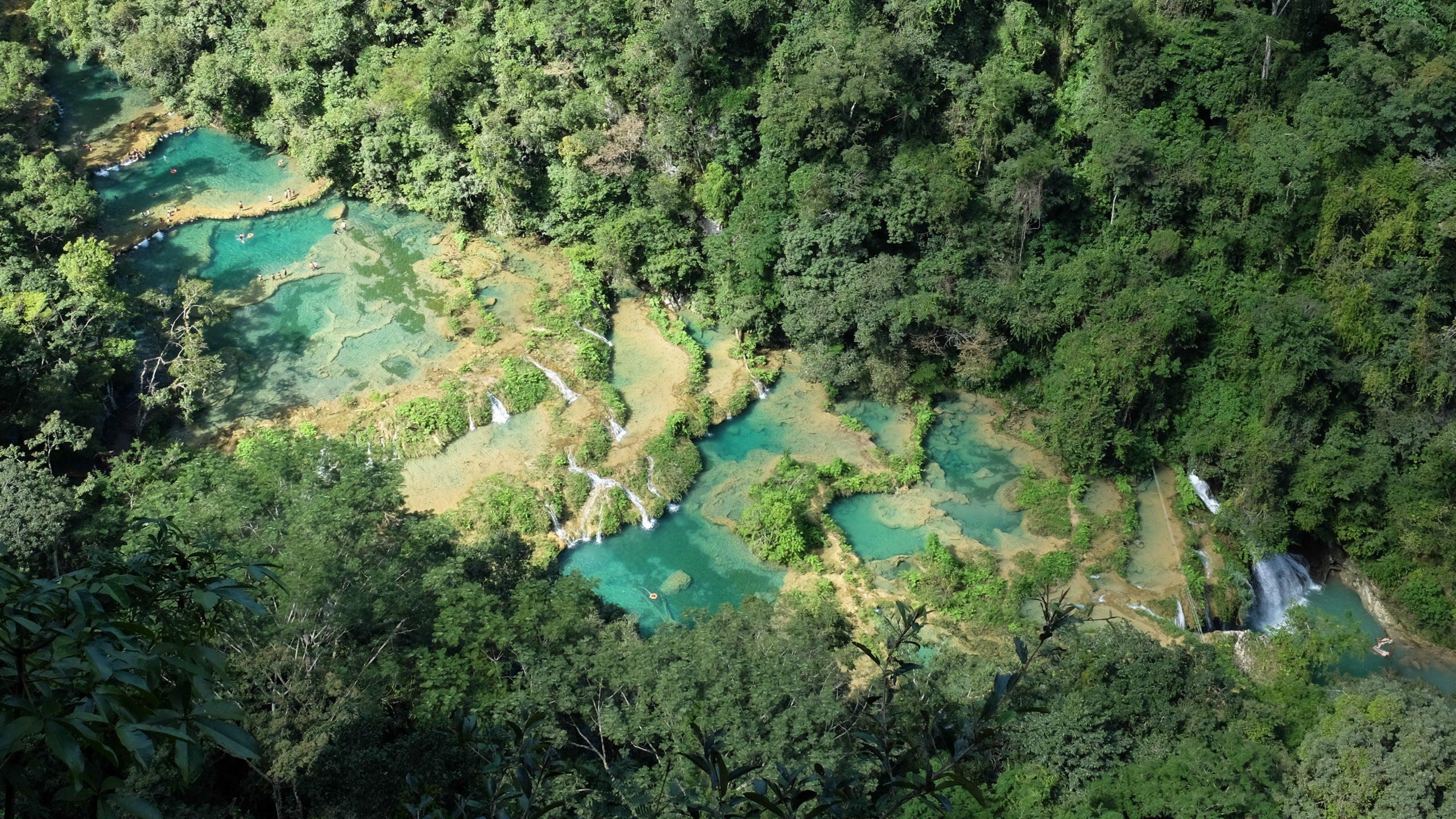 Guatemala land of trees passport