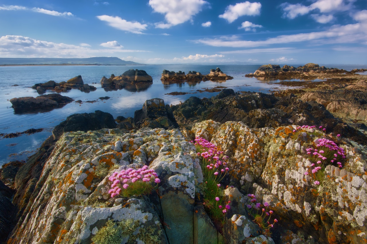 Have you ever been to Ireland, the Emerald Island?